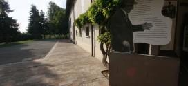LE DOMENICHE AL MUSEO CERVI > Visite guidate per Expò