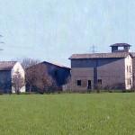 Immagine 2009