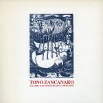 TonoZancanaro.DalGibboalletematichediliberazione