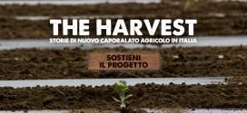 Presentazione THE HARVEST > 19 gennaio 2017